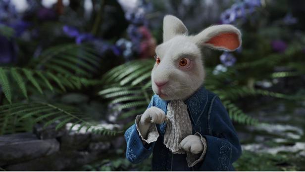Les dangers de la poursuite du lapin blanc